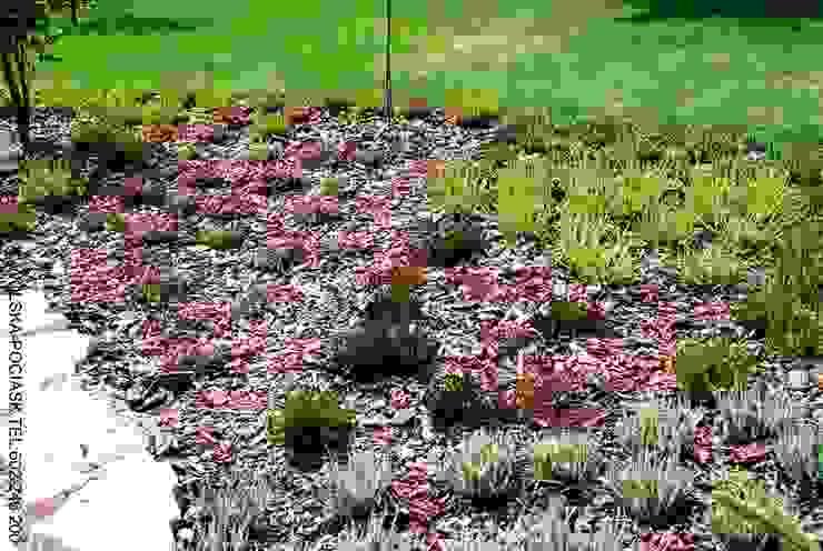 Wrzosowisko po założeniu: styl , w kategorii  zaprojektowany przez Centrum ogrodnicze Ogrody ResGal,Klasyczny
