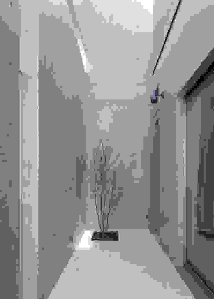 シンボルツリー モダンデザインの テラス の 本田建築設計事務所 モダン