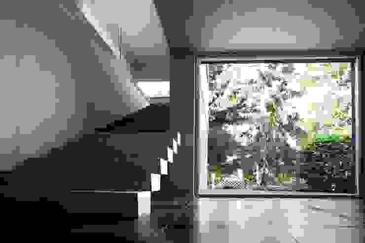 Kneer GmbH, Fenster und Türen: modern tarz , Modern