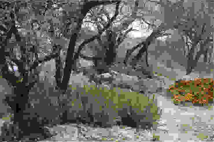 Finca el Rosario, El Marqués, Qro. Jardines mediterráneos de Hábitas Mediterráneo