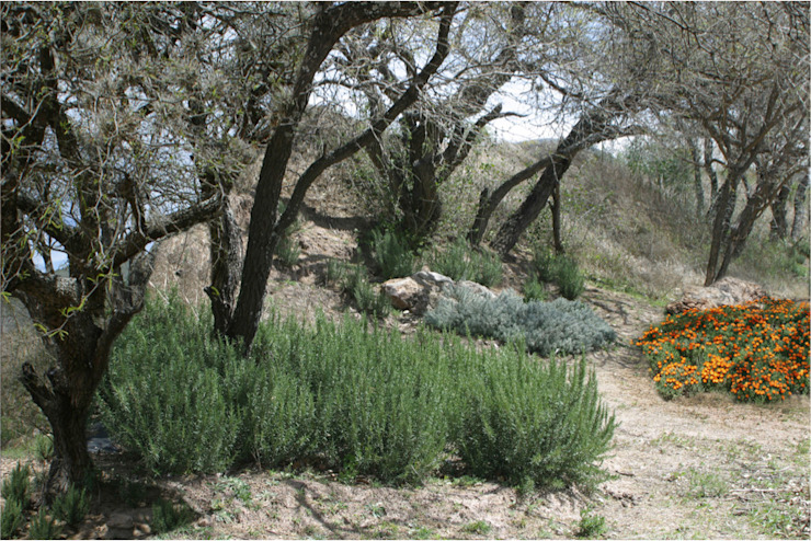 Mediterrane tuinen van Hábitas Mediterraan