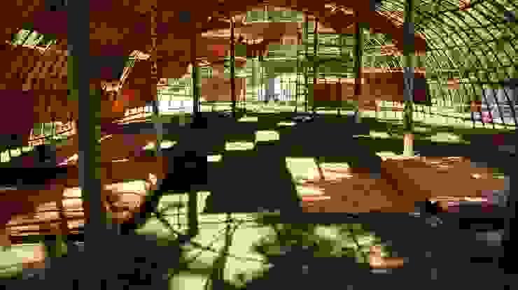 Jardines de estilo moderno de Terrapalha Moderno