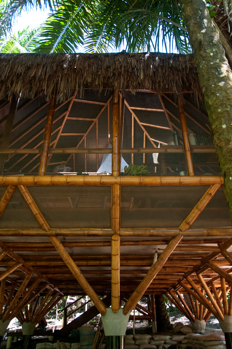 Tropical style balcony, veranda & terrace by IR arquitectura Tropical Bamboo Green