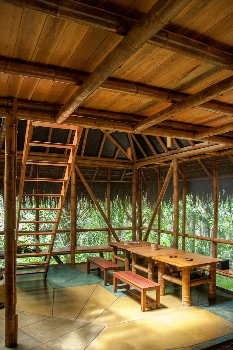 Tropical style dining room by IR arquitectura Tropical Bamboo Green