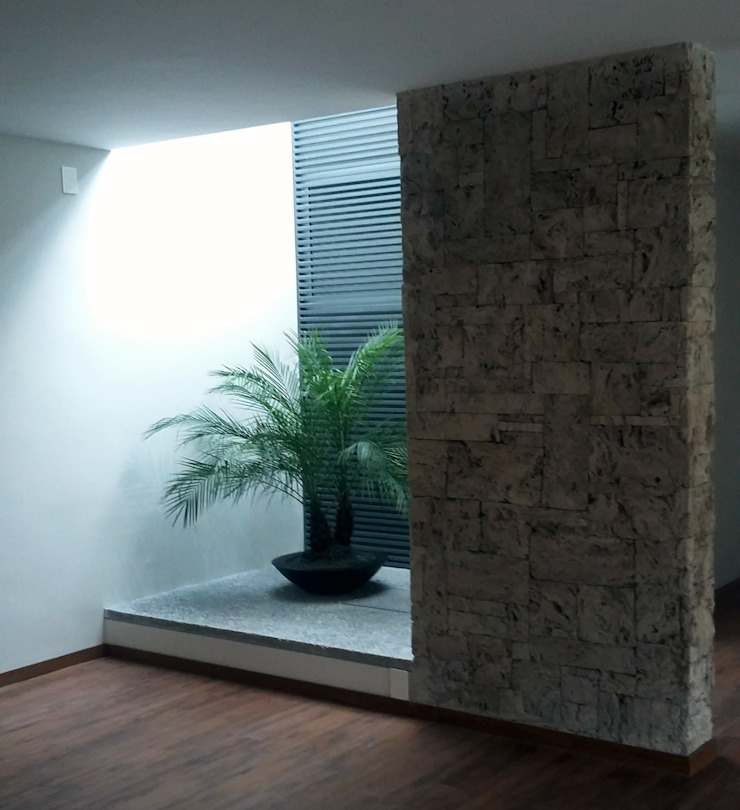 Patio Jardines modernos de H + M Arquitectos Moderno