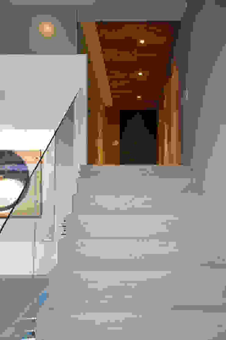 Scandinavian style corridor, hallway& stairs by Basch Arquitectos Scandinavian Solid Wood Multicolored