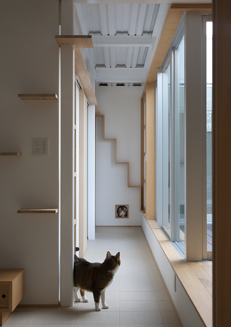 Modern Corridor, Hallway and Staircase by 大野アトリエ Modern Wood Wood effect