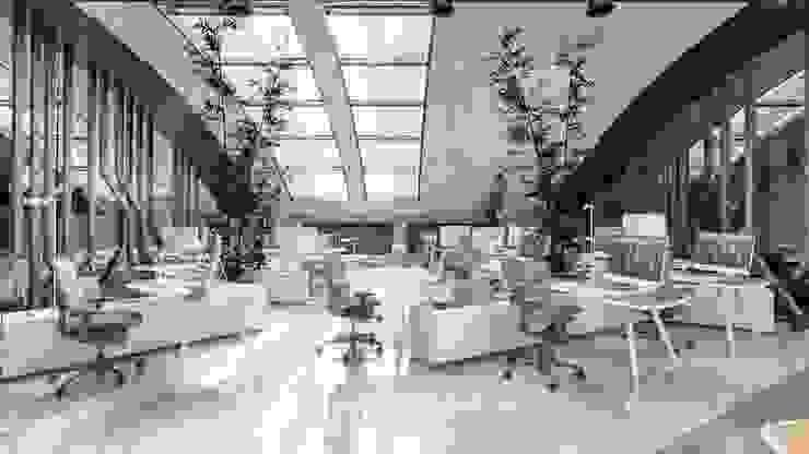 Kevkeb Metal Ofisleri Modern Çalışma Odası Studio Vertebra Modern