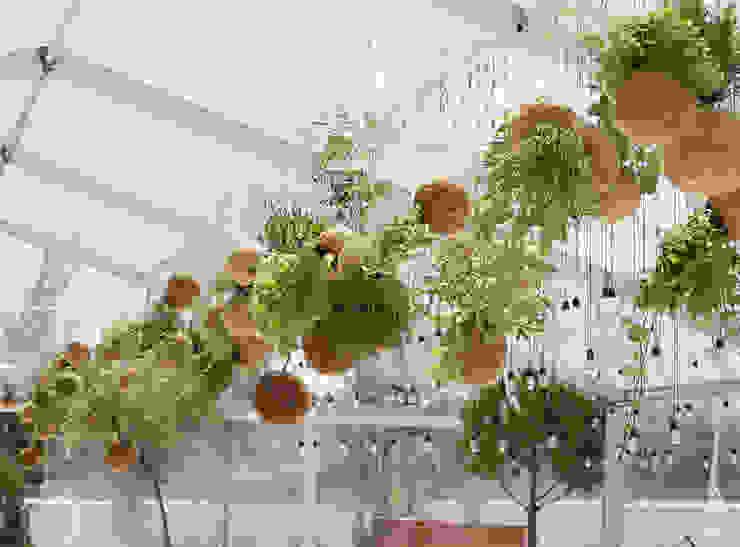 Instalação de plantas fiu suspensas na decoração de um evento Jardins modernos por fiu jardins, lda. Moderno