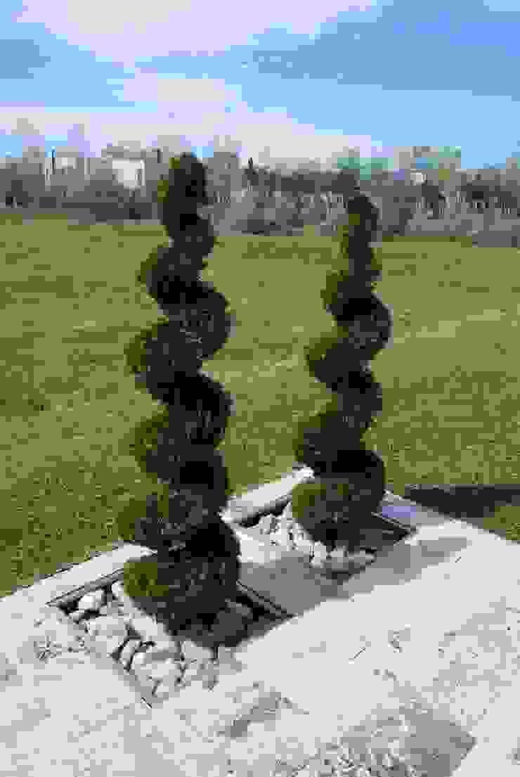 Jardines de estilo moderno de cm espacio & arquitectura srl Moderno