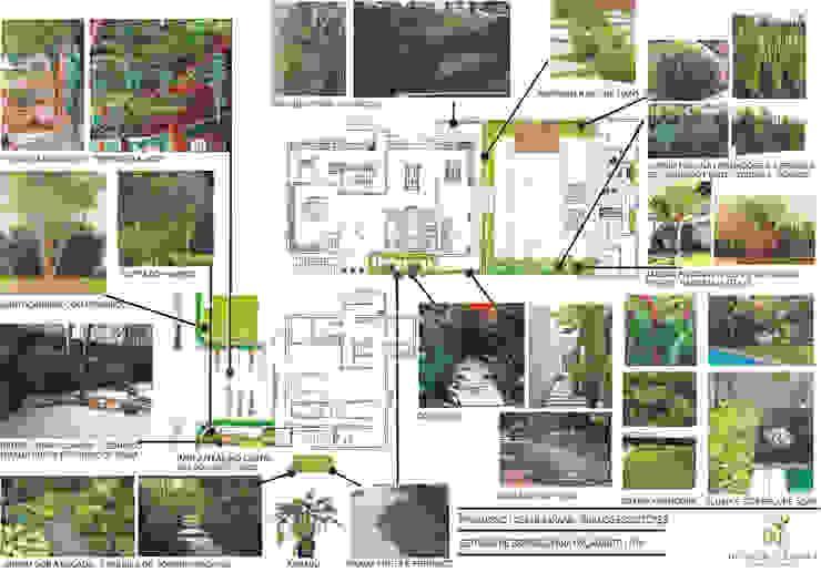 Apresentação do Projeto - Referências e espécies Varandas, alpendres e terraços tropicais por HZ Paisagismo Tropical