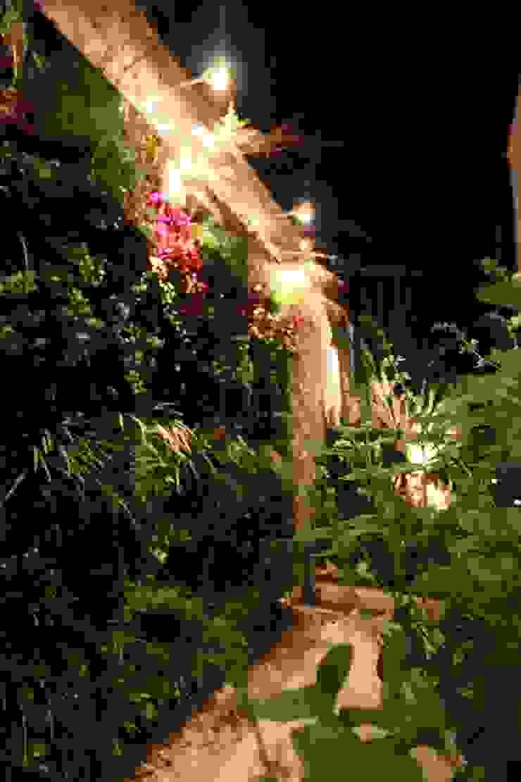 Parede verde - Bloco Neorex Jardins tropicais por HZ Paisagismo Tropical