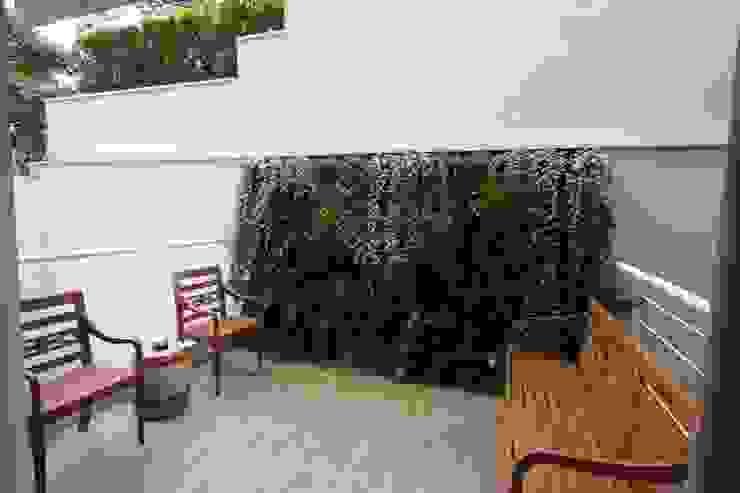 HZ Paisagismo Tropical style garden