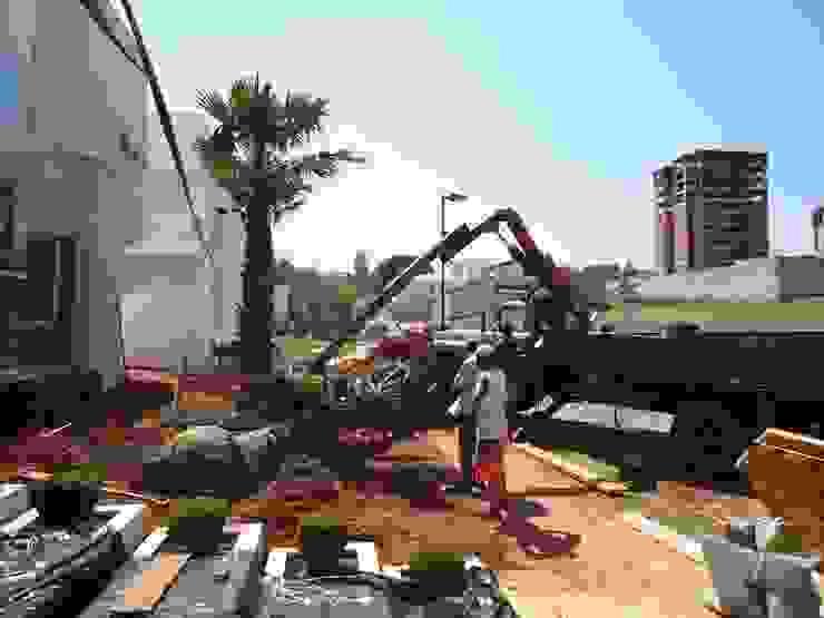 Implatanção Jardins tropicais por HZ Paisagismo Tropical