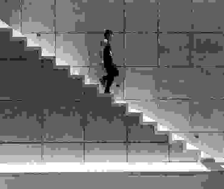 Casa T Pasillos, vestíbulos y escaleras modernos de Studio Arquitectos Moderno