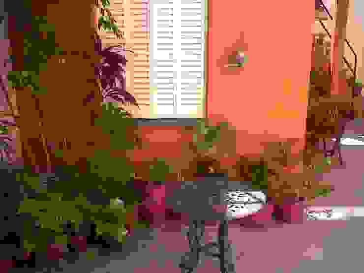 La Casa de Titi – Caballito Jardines modernos: Ideas, imágenes y decoración de APPaisajismo Moderno