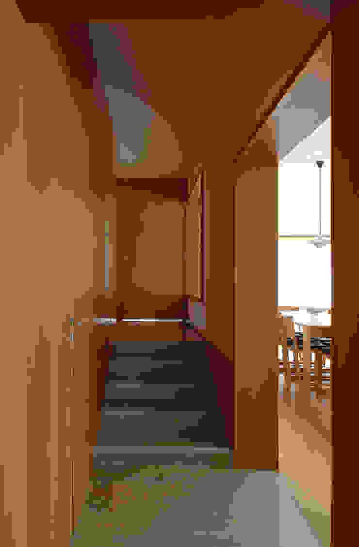 Casa Pinhal Verde Corredores, halls e escadas modernos por SAMF Arquitectos Moderno Madeira Acabamento em madeira