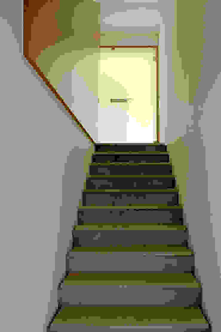 Casa Pinhal Verde Corredores, halls e escadas modernos por SAMF Arquitectos Moderno