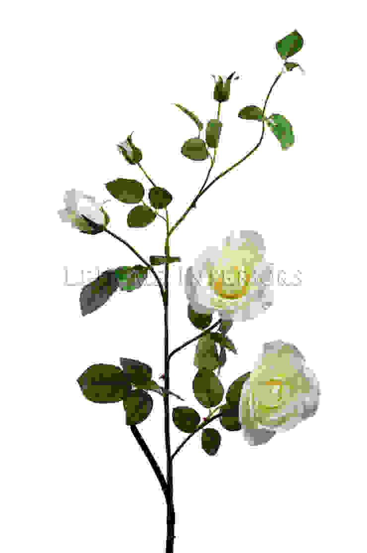 Цветок Шиповник V156 от LeHome Interiors Классический
