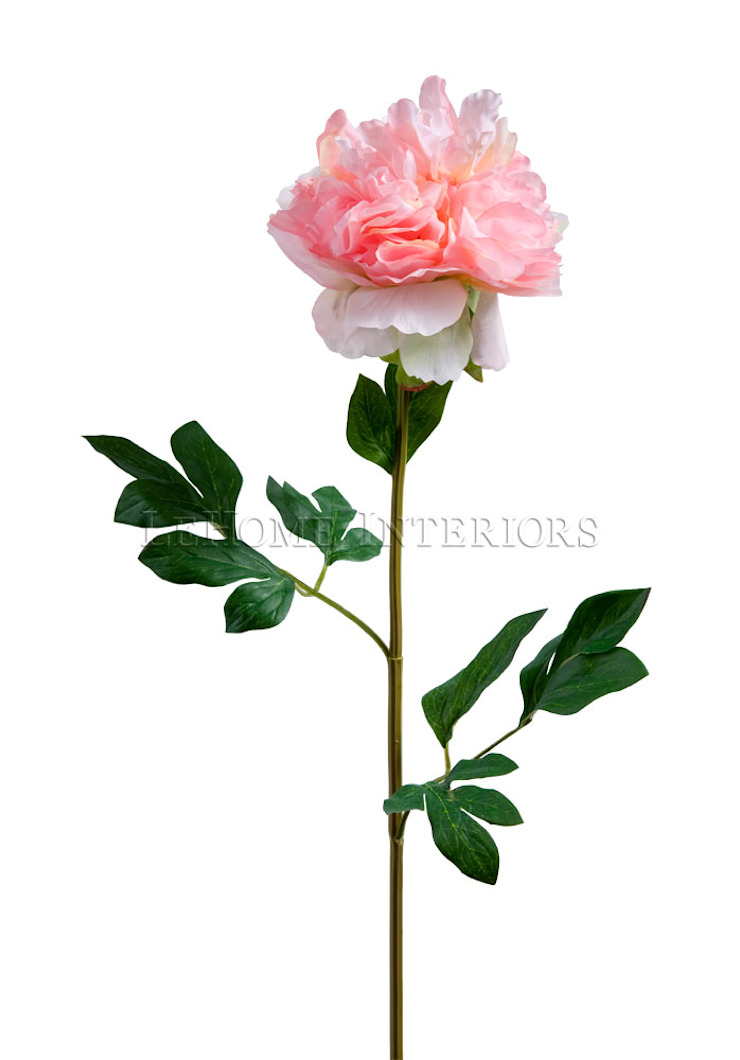 Цветок Азалия V162 от LeHome Interiors Классический