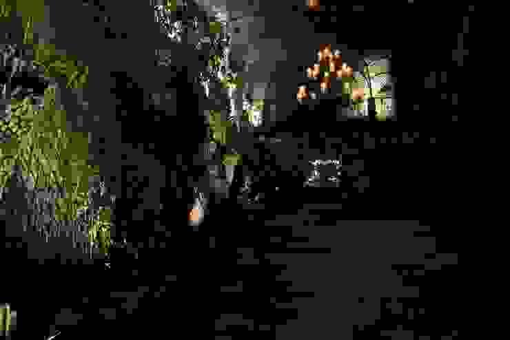 Jardines de invierno clásicos de Visual Stimuli Clásico
