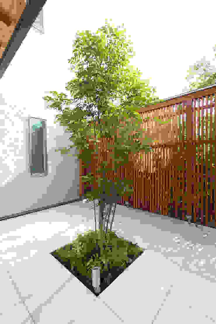 河内長野の家 モダンな庭 の 株式会社 atelier waon モダン
