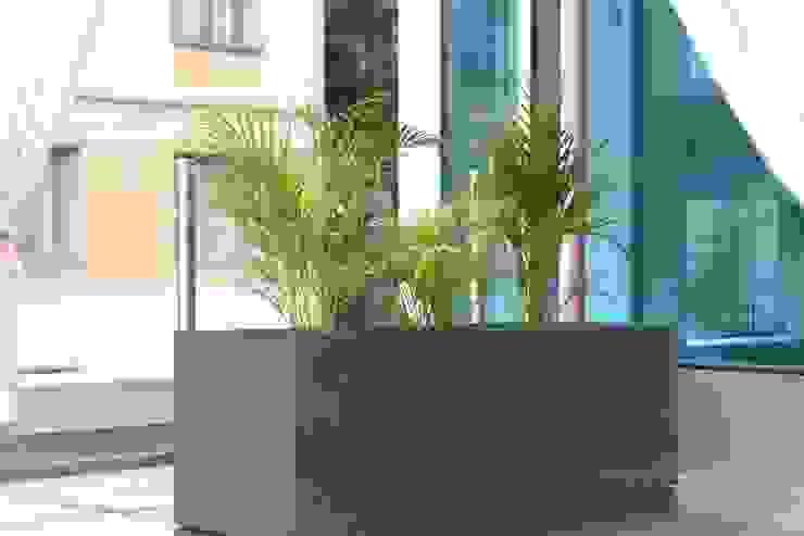 Betonowe donice Nowoczesny salon od Modern Line Nowoczesny