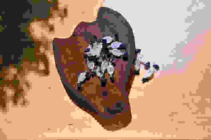Deski dębowe do krojenia / serwowania WILD od D2 Studio Rustykalny Drewno O efekcie drewna