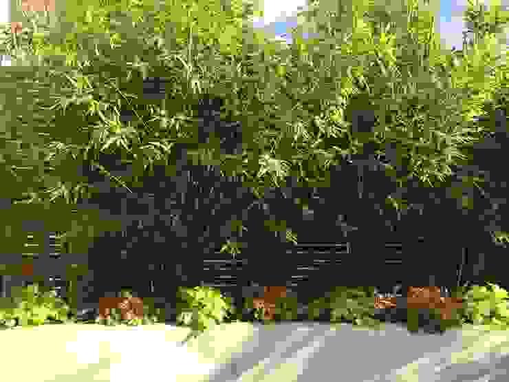 Urban Retreat Modern garden by Cultivate Design Modern