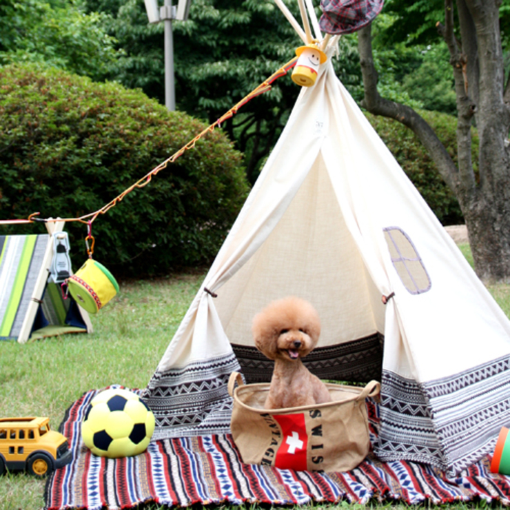 바늘나무 두 그루: 바늘나무두그루의  아이 방