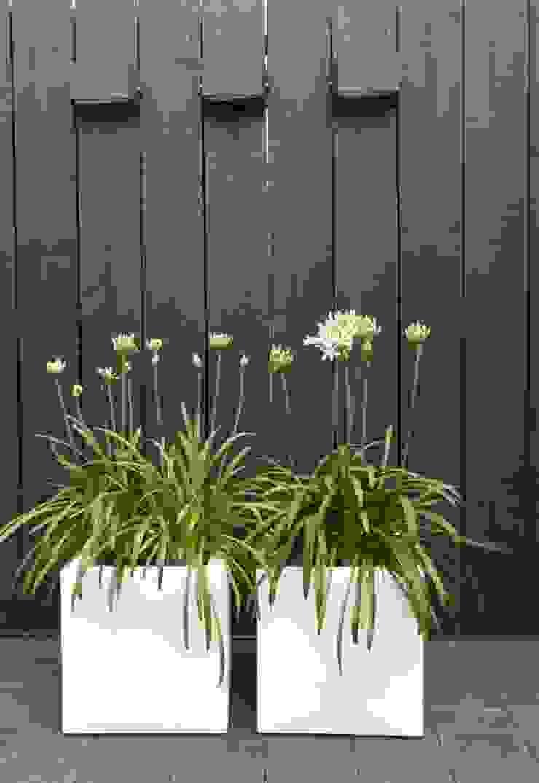 Bacs à fleurs en fibre de verre et polyester brillant par SO GARDEN Moderne