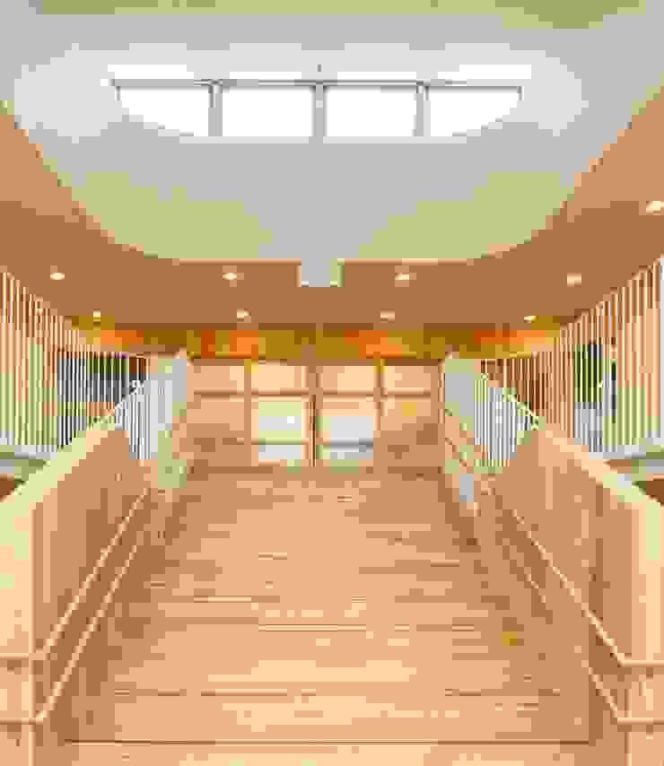 大階段とトップライト モダンな 壁&床 の フィールド建築設計舎 モダン 木 木目調