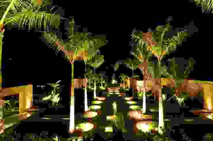 modern  by Tropical America landscaping, Modern