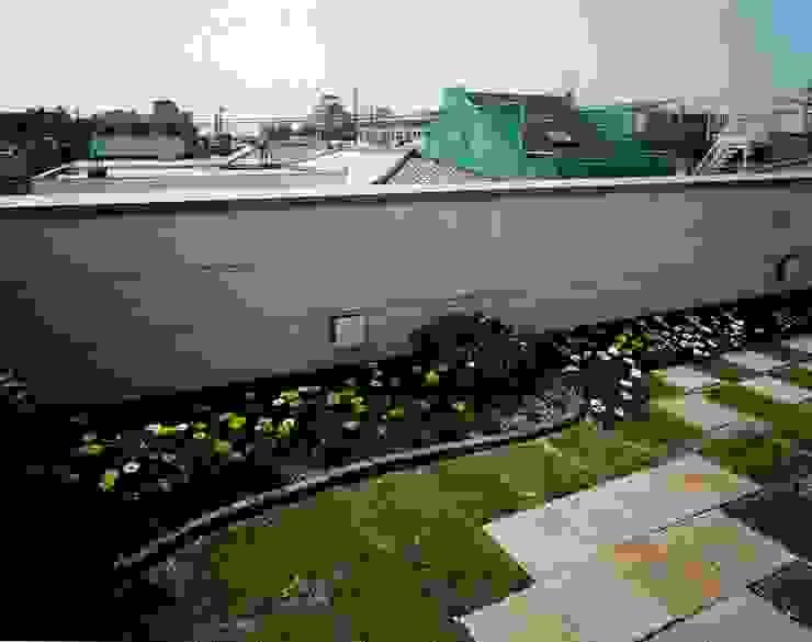 南上町の家 モダンな 家 の 株式会社 atelier waon モダン