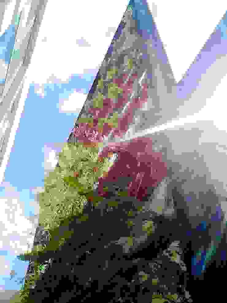 Modern style gardens by Bambootec Modern