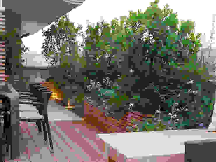 Hiên, sân thượng phong cách hiện đại bởi Paola Thiella Hiện đại
