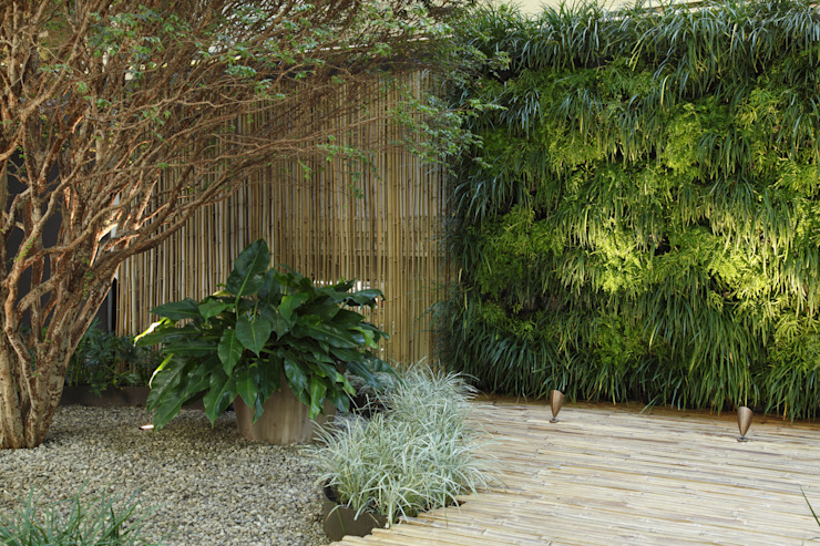 Minimalist style garden by BAMBU CARBONO ZERO Minimalist Bamboo Green