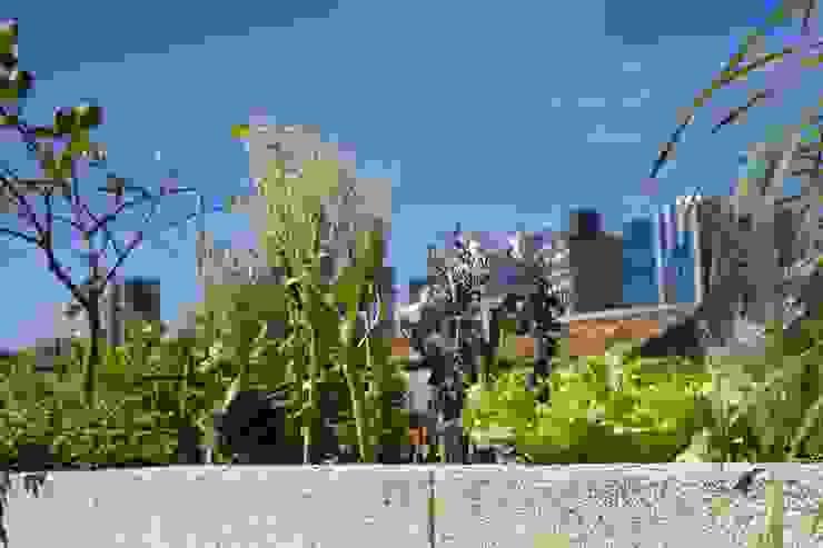 Horta Urbana Varandas, alpendres e terraços campestres por Ecoeficientes Campestre