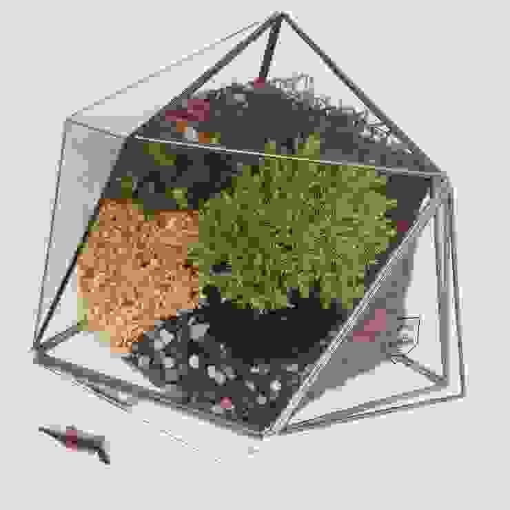 Icosaedro de Decorería La Suculenta Moderno