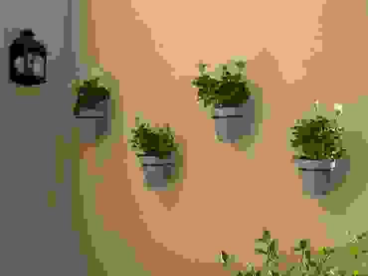 Jardines de estilo clásico de BAIRES GREEN Clásico