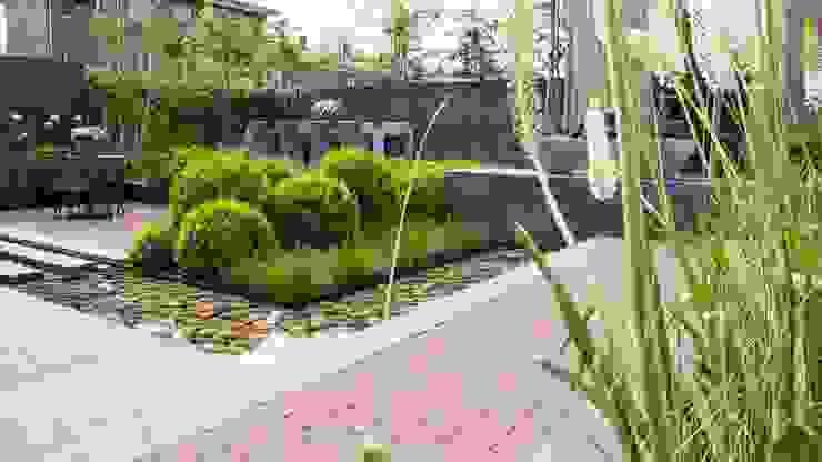 Сад в стиле модерн от Hoveniersbedrijf Tim Kok Модерн