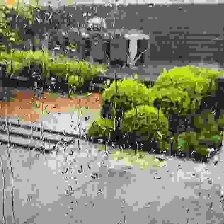 Tuin in Rhoon:  Tuin door Hoveniersbedrijf Tim Kok, Modern