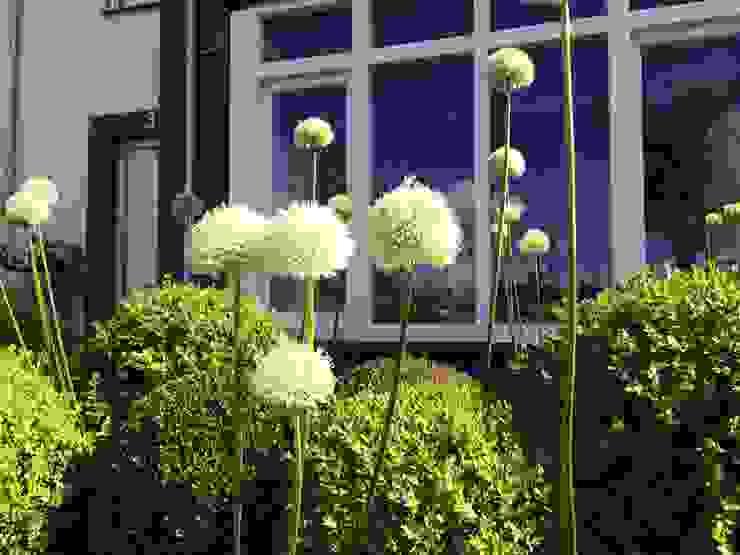 Giardino in stile  di Hoveniersbedrijf Tim Kok