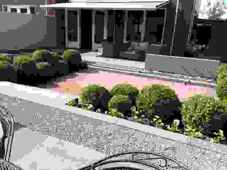 Modern style gardens by Hoveniersbedrijf Tim Kok Modern