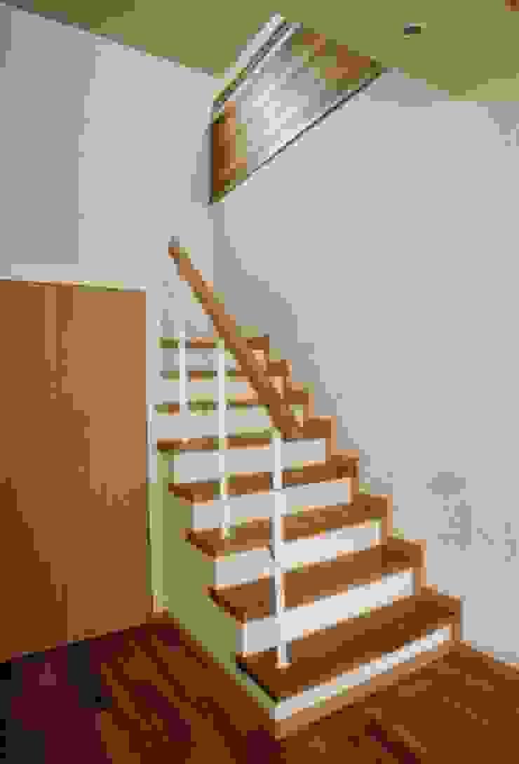 和歌山の家 モダンスタイルの 玄関&廊下&階段 の 株式会社 atelier waon モダン
