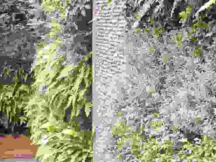 Chelsea Creek - copyright St George Plc Modern garden by Aralia Modern Bamboo Green