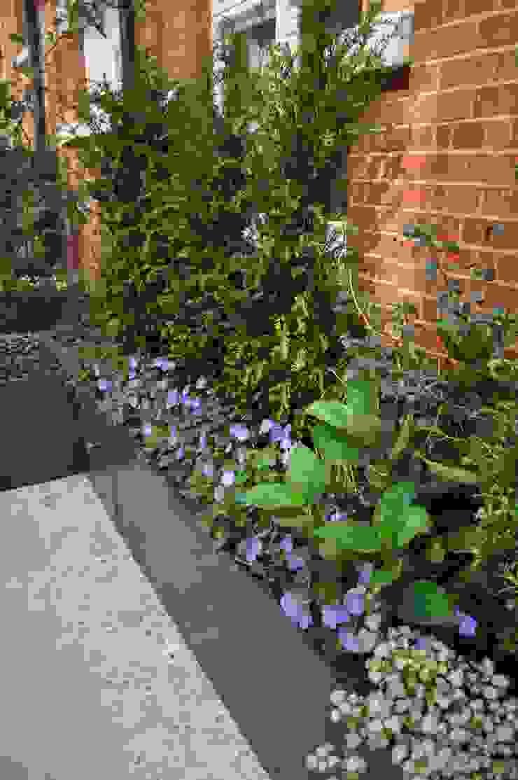 Knightsbridge Roof Terrace - Aralia Garden Design Modern commercial spaces by Aralia Modern Bricks