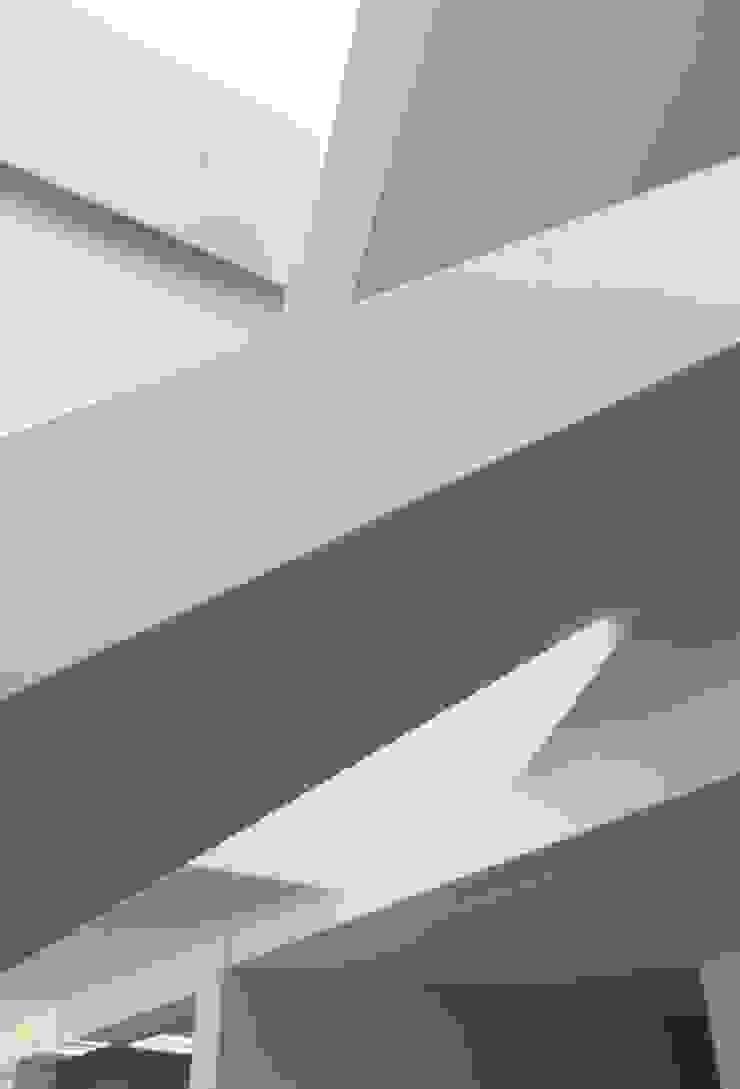 Remy Arquitectos 現代風玄關、走廊與階梯