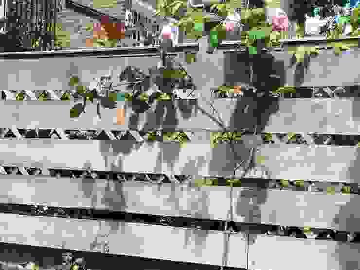 Regent's Park Terrace Aralia Classic style garden Wood Beige