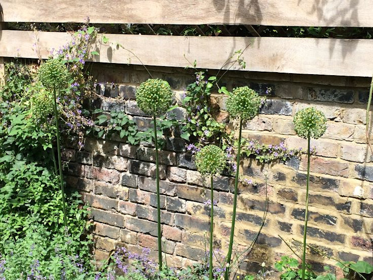 Regent's Park Terrace Aralia Classic style garden Bricks Green